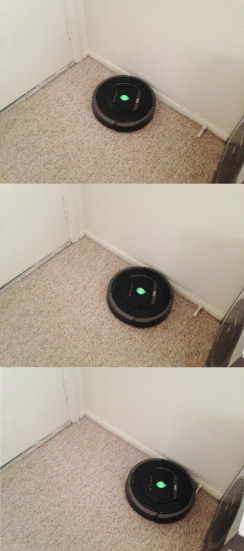 It's like a Pokemon. Roombaaa. Rooooomba? Roomba!