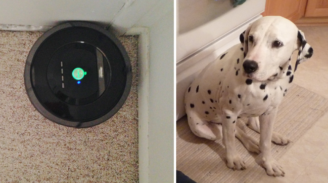 roomba simon